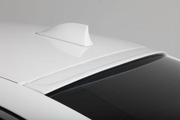 3DDesign Dach- Spoiler für BMW 5er F10